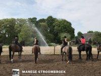 Manege Stroombroek