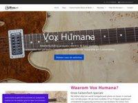 Vox Humana Guitar Centre