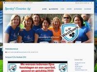 Sportvereniging sv DFS Burgh-Haamstede