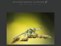 Victor Bos - natuurfotografie