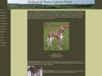 Bracco Italiano alle informatie over onze ...