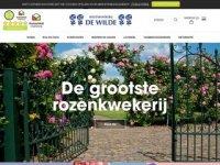 Screenshot van dewilde.nl