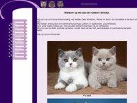 Screenshot van catterybritcity.nl