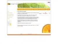 Orange+lime marketing