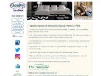 ChemDry Ecolink - tapijtreiniging en ...