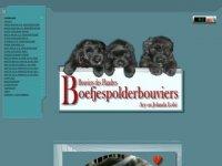 Bouvierkennel v.d. Boefjespolder
