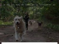 Hondenuitlaatservice en huisdierenoppas Neus ...