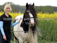 Paard en Visie
