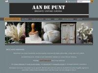 Screenshot van aandepunt.nl/