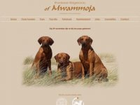 Rhodesian ridgebacks of Mwammoja