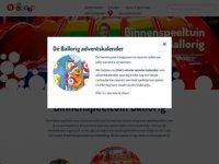 Screenshot van ballorig.nl